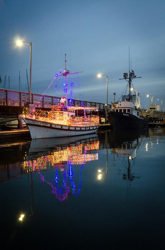 Pillar Point Harbor Lights-3